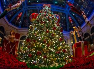 2015 Bellagio Christmas Display