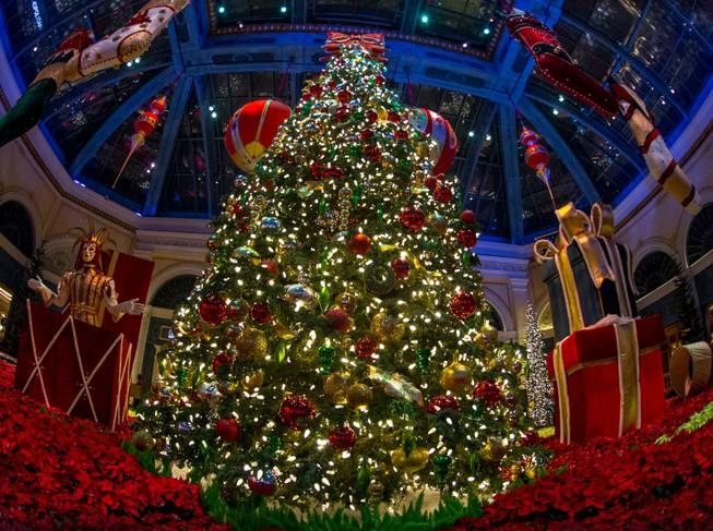 The annual Christmas display at Bellagio Conservatory & Botanical Gardens ...