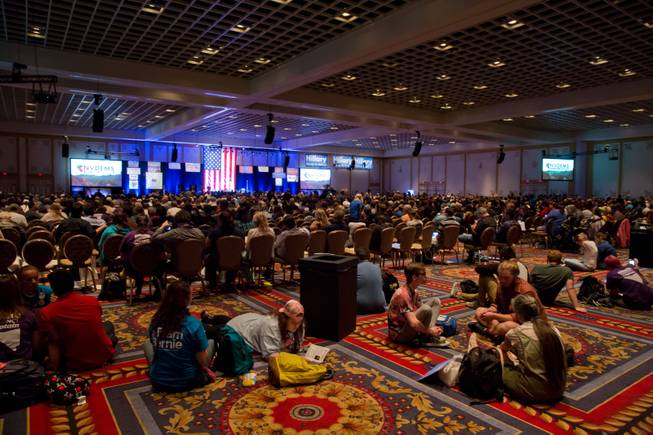 State Democratic Party Convention