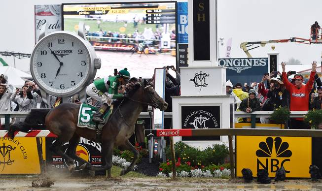Horse deaths mark tragic start to Preakness Day