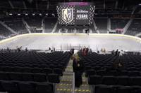 When the NHL's newest franchise went looking for a keen, energetic mind to help oversee the training and performance of its players, it did not confine its search to conventional hockey circles ...