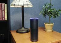 As Amazon's conversational technology Alexa becomes more prevalent in homes throughout the country, governments at all levels are embracing it as a means of making information about services more readily available to constituents. For many public agencies at the state and local levels, these Alexa-centric programs are ...