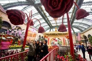 Chinese New Year at Bellagio Conservatory
