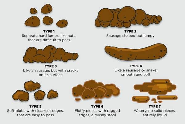 What Your Poo Says About You And Your Health Las Vegas
