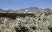 On Wednesday, Nevada lawmakers got an extensive look at a bold proposal to require utility companies in the state to draw 80 percent of their energy from renewable sources by 2050. During a hearing, there were so many supporters, in fact, that some had to be cut short ...