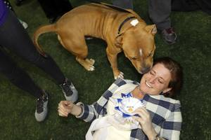 Animal Foundation's 14th Annual Best in Show