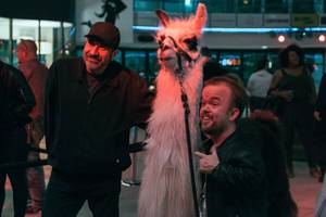 Comedian Dave Attell (left) poses for a photograph with comedian Brad Williams and Cusco, Zappos' llama mascot, during the Crapshoot Comedy Festival in Downtown Las Vegas, Thursday, May 18, 2017.