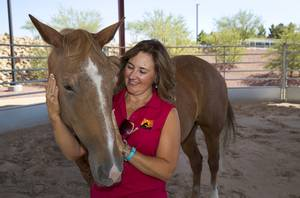 Linda Florence of L.E.A.N. strokes a horse named Roxy (Roxanne) at the Lone Mountain Equestrian Park Sunday July 2, 2017. L.E.A.N. (Local Equine Assistance Network) is a Las Vegas nonprofit that helps horses that have been abandoned or neglected.