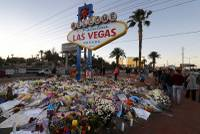 Nearly two weeks after the shooting in Las Vegas, investigators have found few clues to explain why Stephen Paddock amassed an arsenal of assault-style weapons and turned them on concertgoers at a country music festival. FBI profilers are trying to construct a psychological makeup of Paddock, which ...