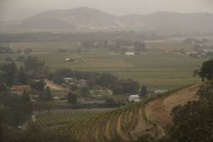 Vineyards are covered in smoke from a wildfire Monday, Oct. ...