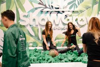 A convention goer jumps into a pool full of foam marijuana plant cutouts at the ShowGrow booth during the MJ Biz conference at the Las Vegas Convention Center on Wednesday, Nov. 15, 2017.