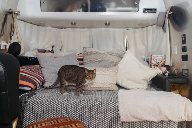 A glimpse inside the Fergusons Project in Downtown Las Vegas, Nev. on November 14, 2017. A glimpse inside Jennifer Taler's airstream, where one of her cats named Marty resides.