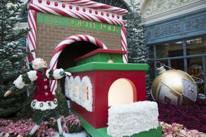 Holiday Glamour at Bellagio Conservatory