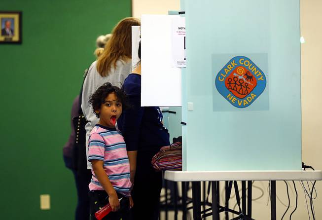 Midterm Voting At McDoniel Elementary