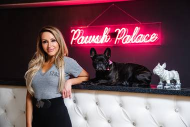 Pawsh Palace, a cage-free dog hotel, opened in Las Vegas last year. Owner Lisa Imbesi's goal was to make it a one-stop shop for a dog's needs.