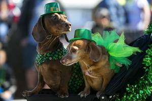 53rd Annual Saint Patrick's Day Parade